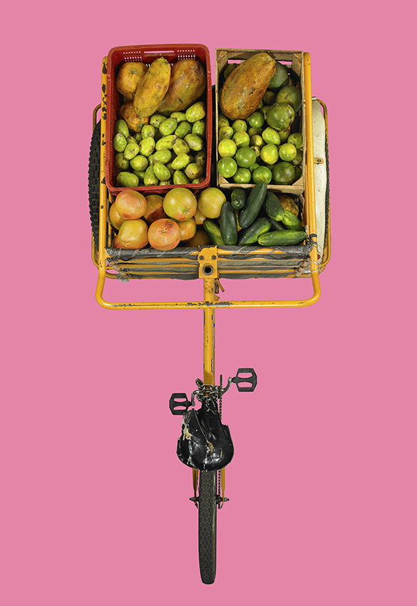 fruit tricycle